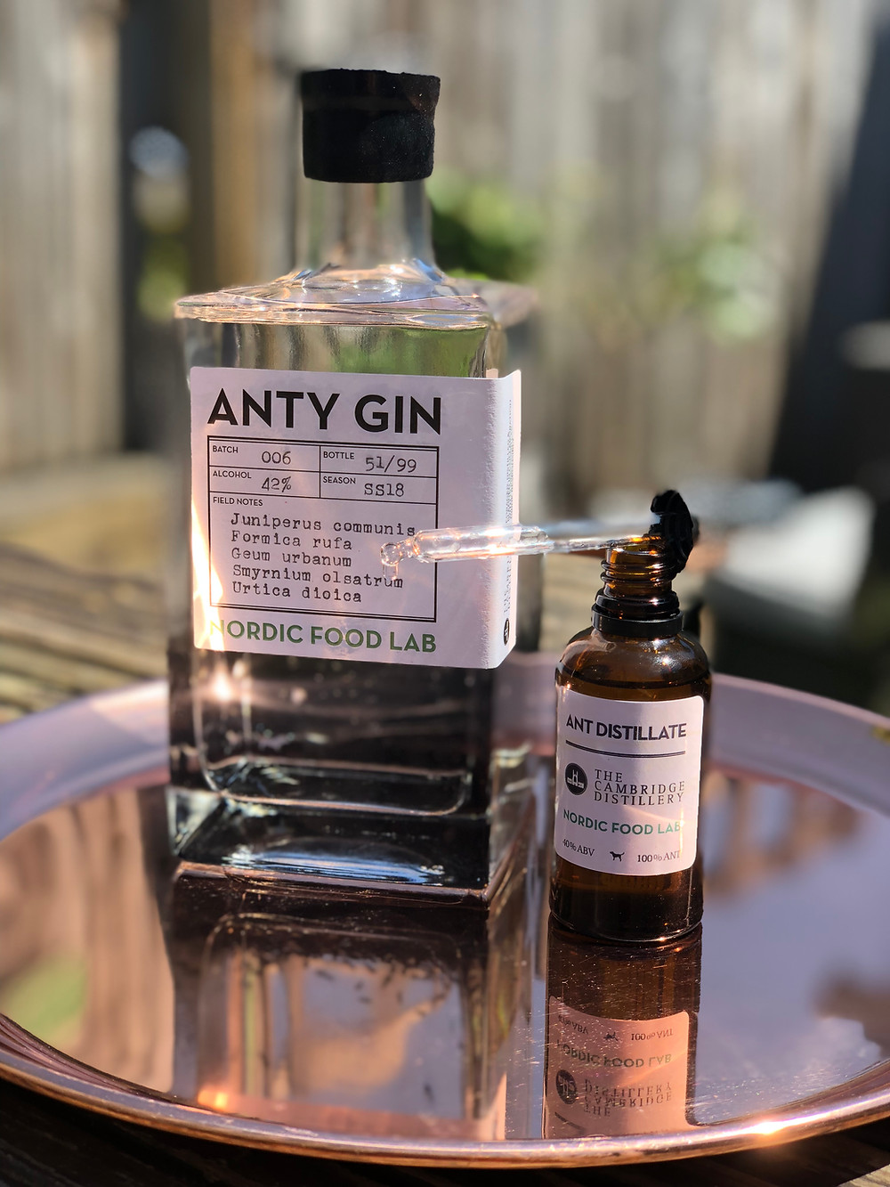 Anty Gin Blind Pig Heswall