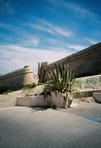 Super Prima_Ibiza 2105-11.jpg