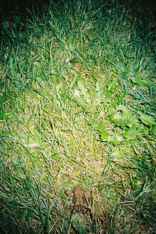 SuperPrima_2010-52.jpg