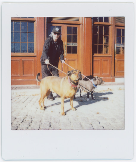 MAN WITH DOGS_001.jpg