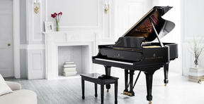 Want to own a Grand Piano?