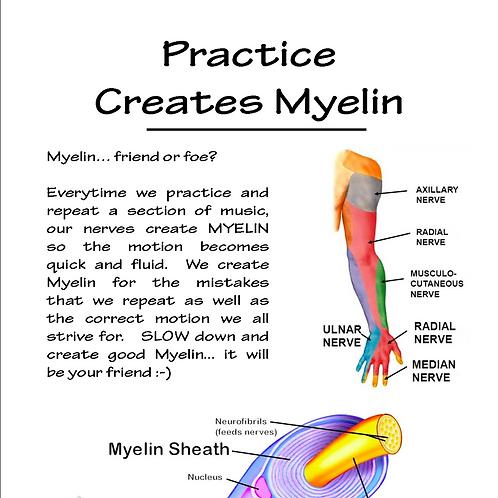 Practice Creates Myelin
