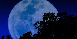 Jan 31 is a Blue Moon!