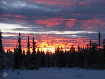 Raquettes à neige en Laponie finlandaise