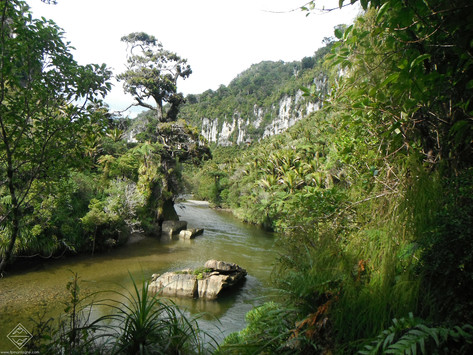 Randonnées en Nouvelle-Zélande