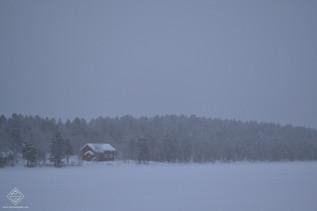 Raquettes à neige à Saariselkä