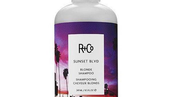 R+CO SUNSET BLVD blonde shampoo
