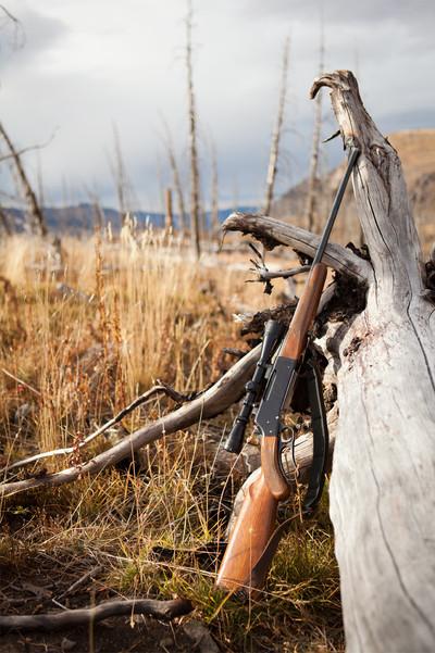 Hal's Remington Rifle