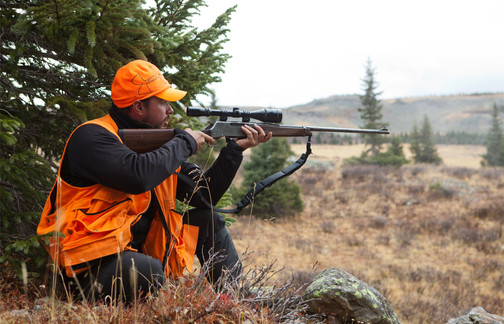 Zach taking an elk into his sight.