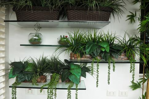 Arranjos verdes para prateleiras de vidro