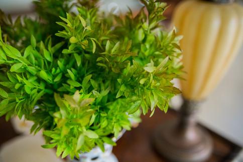 Arranjo de Flores de Laranjeira