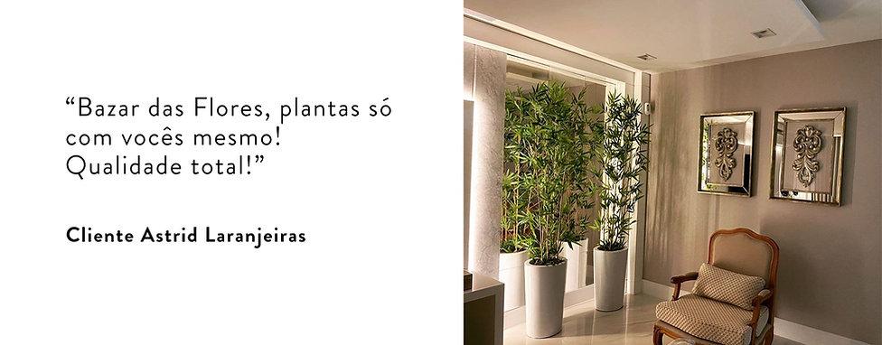 Astrid_Laranjeiras.jpg