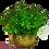 Thumbnail: Arranjo de Folhas de Laranjeira em Vaso Rose Gold