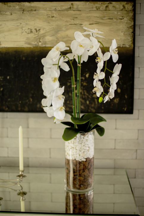 Arranjo de Orquídea Phalaenopsis Permanente
