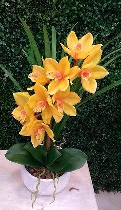 Arranjo de Orquídea Cymbidium Amarela