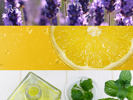 Essential for Spring! Spotlight on Essential Oils