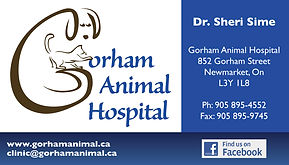Business card designed for Gorham Animal Hospital in Newmarket