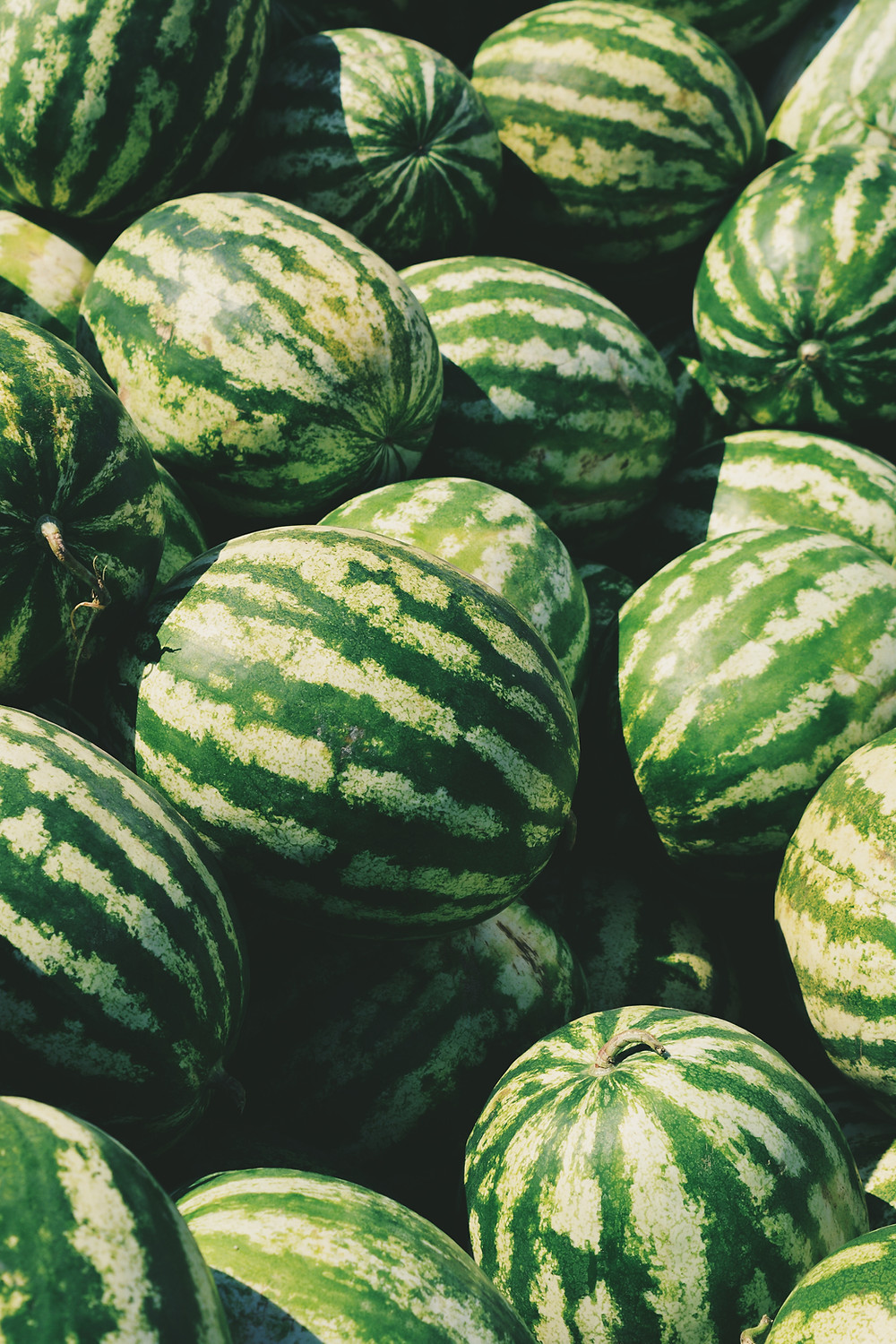 watermelons, cooling