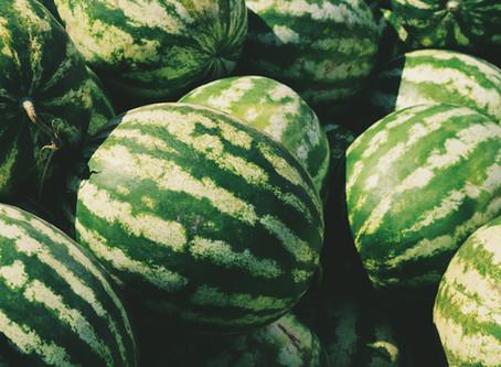 Watermelon (no Beyonce)