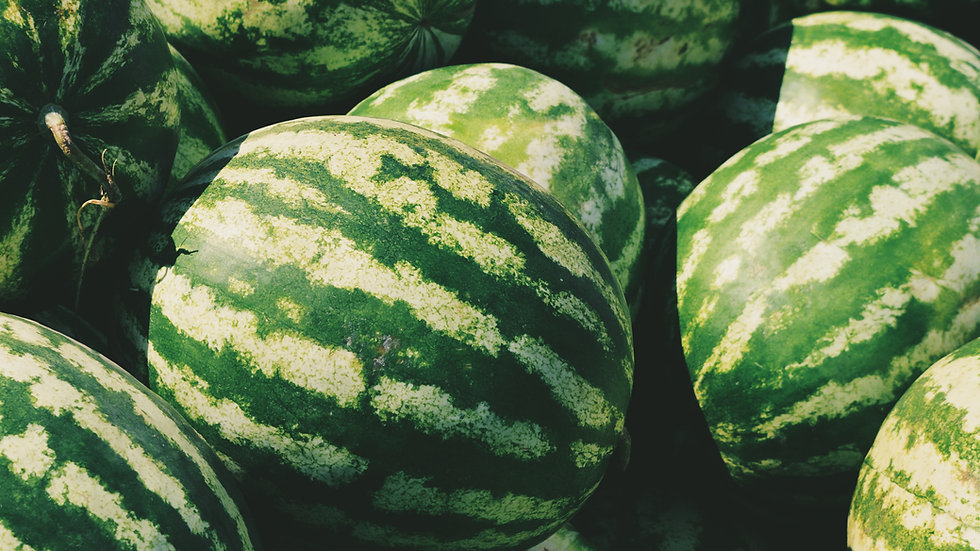 Water Melon Whole