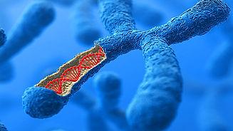 ACTN3_The_Muscle_Gene.jpg