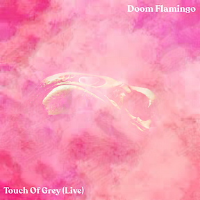 touch of grey live.PNG