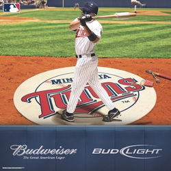 Budweiser Twins Baseball