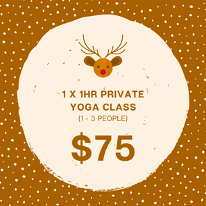 1 x 1hr Private Yoga Class  (1 - 3 People)
