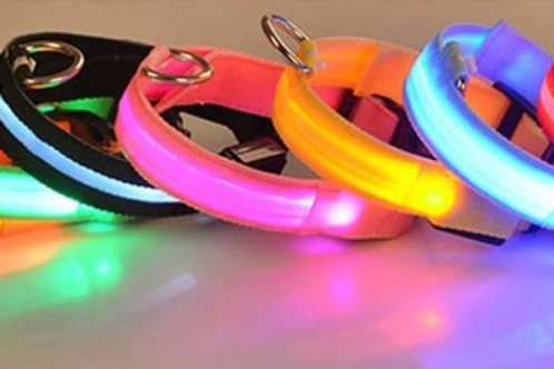 Light UP Canine Collar