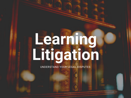 Learning Litigation - Understand Your Legal Disputes