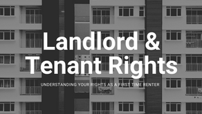 I'm renting an apartment for the first time- what are my rights?