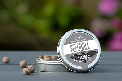 Wildflower Bat Mix Seedballs