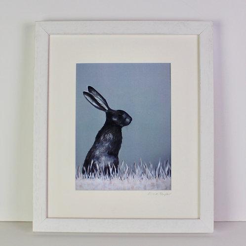 Sitting Hare Print