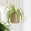 Thumbnail: Hanging Planter