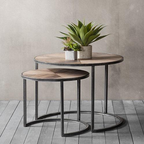 Douglas Coffee Tables - Nest of 2