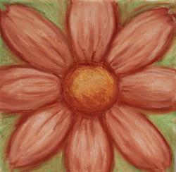 conte crayon flower