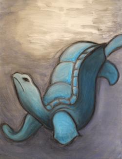 Blue Turtle Memories from Mystic Aquarium
