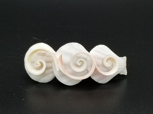 Seashell Hair Clip KCT09
