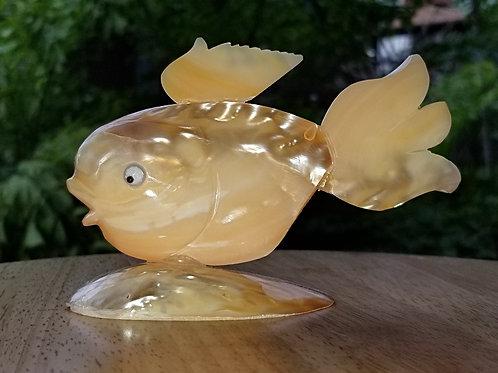 Seashell Goldfish
