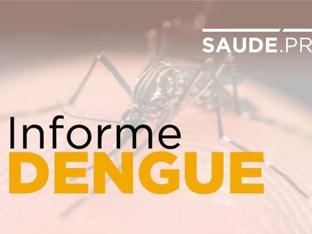 Verão exige atenção da população na prevenção da dengue