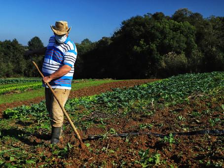 Governo investe R$ 5,94 milhões para apoiar projetos de 1.360 famílias rurais