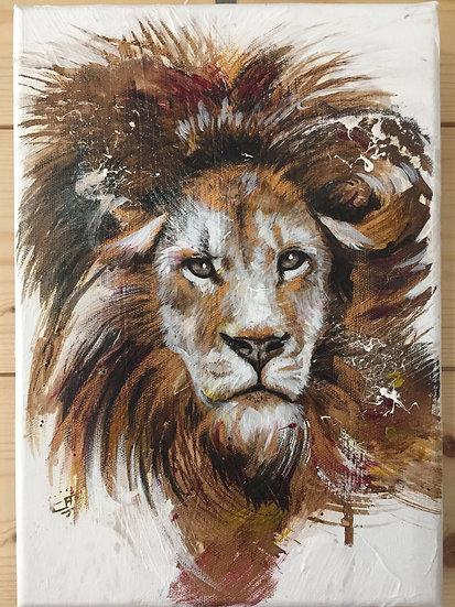 """Lion#02 - collection """"La beauté en voie de disparition"""""""