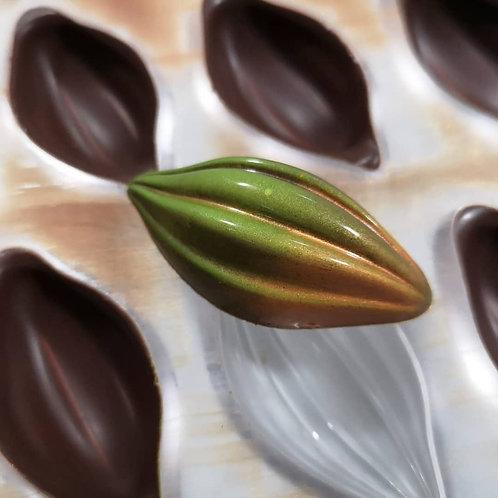 Molde bombón praline haba de cacao