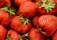Aardbeien foto AMC.jpg