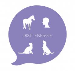 Dixit Energie