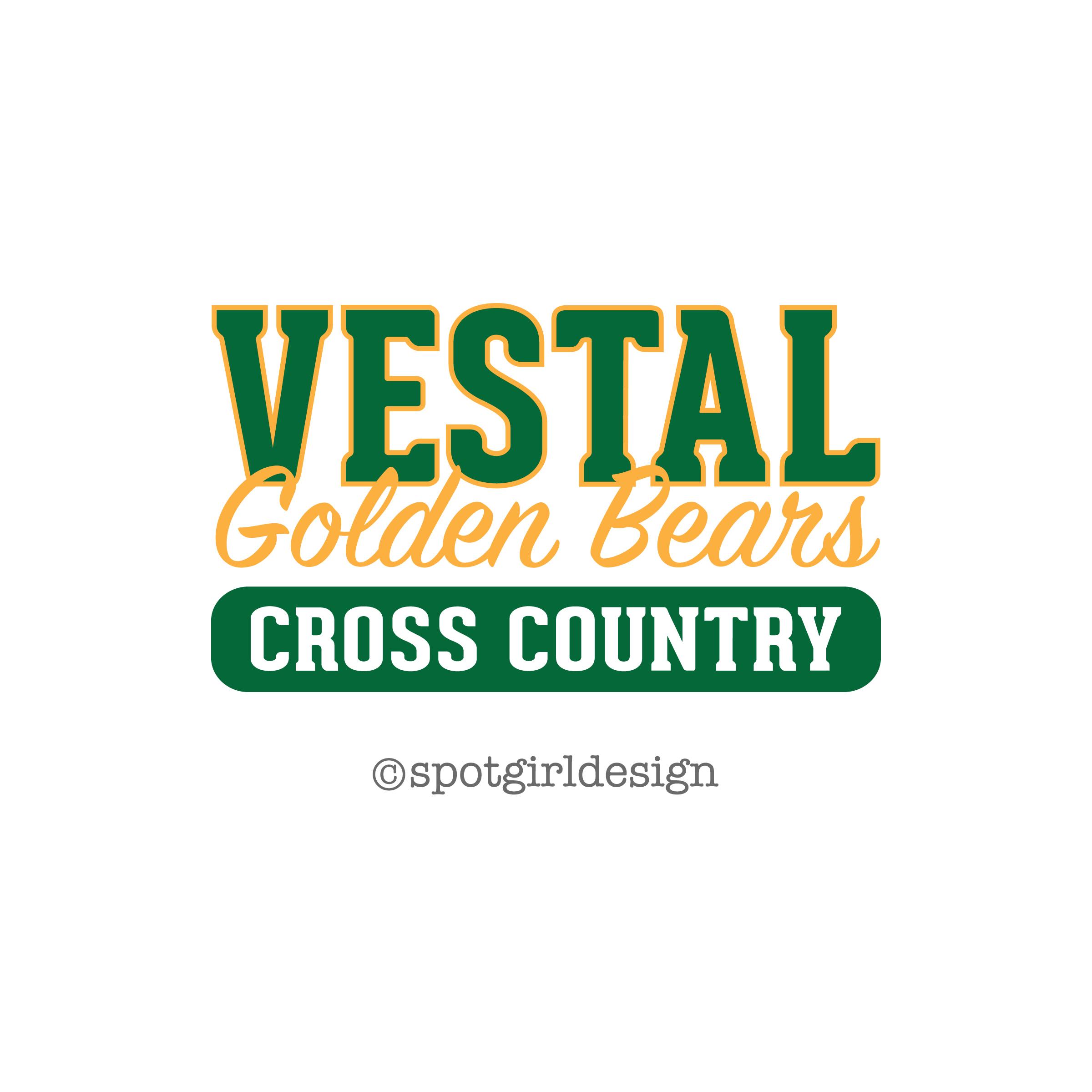VMS XC Logo