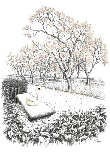 Rincón del huerto, y cisne.