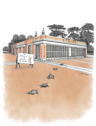 Casa de Vacas, y tortugas.