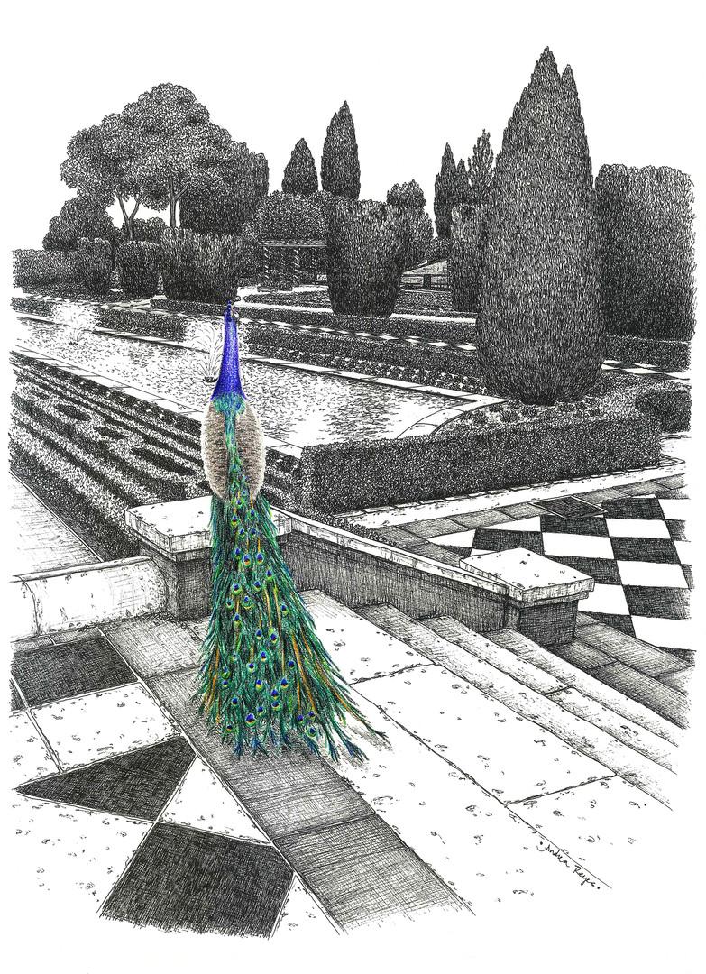 Jardines de Cecilio Rodríguez, y pavo real.