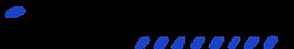 Logo-Race-Coaching.png